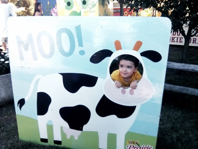obviously the cutest cow at the fair this year. (also? good lord...SO MANY photo op cutout boards EVERYWHERE)